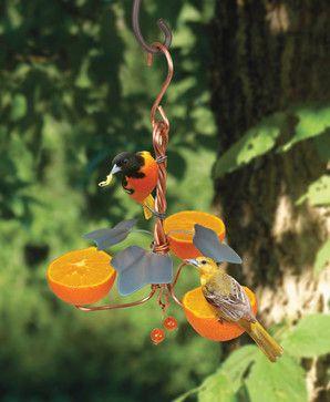 Copper Oriole Triple Fruit Feeder with Ivy - modern - Bird Feeders - BuilderDepot, Inc.