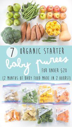 7 Bio – Babynahrungsrezepte für 20 US – Dollar – Baby Food