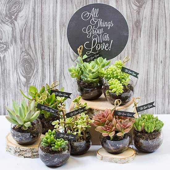 Everyone loves succulents -- and everyone will love you for thinking to provide them with a practical favor like these hand-labeled plants! via Smarty Had a Party/
