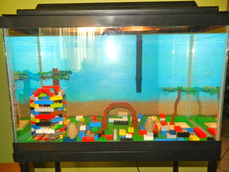 Another way to decorate your fish tank for the home for Fish and pets unlimited