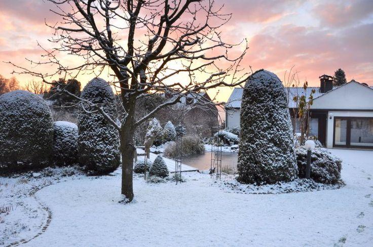 25 best ideas about calendrier du jardinier on pinterest for Jardin hiver plantation