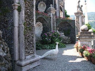 Biuro Turystyczne ALLORA: Północne jeziora Włoch - Lago Maggiore