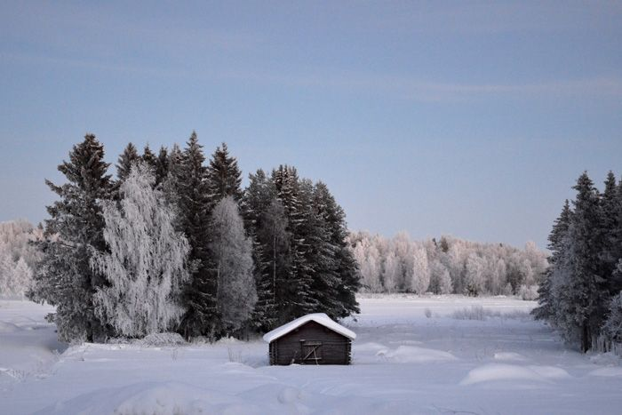 Timrad Lada - Norrbotten - Sweden ©HojnaSandra.se