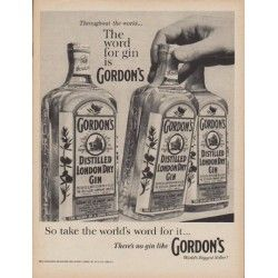 """1960 Gordon's Gin Ad """"The word for gin"""""""