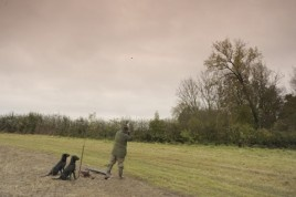 Driven pheasant shooting from Southfields Farm, Leicestershire © Bob Atkins