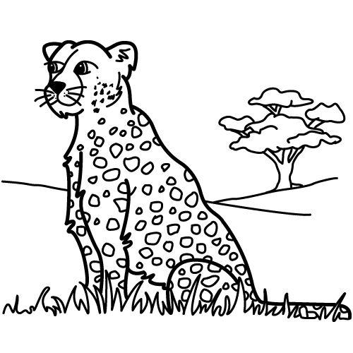 leopardo dibujo - Buscar con Google