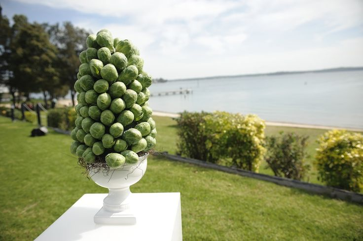 Brussel sprout tower