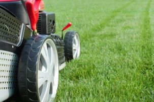 When can I mow my overseeded lawn? - Houzz