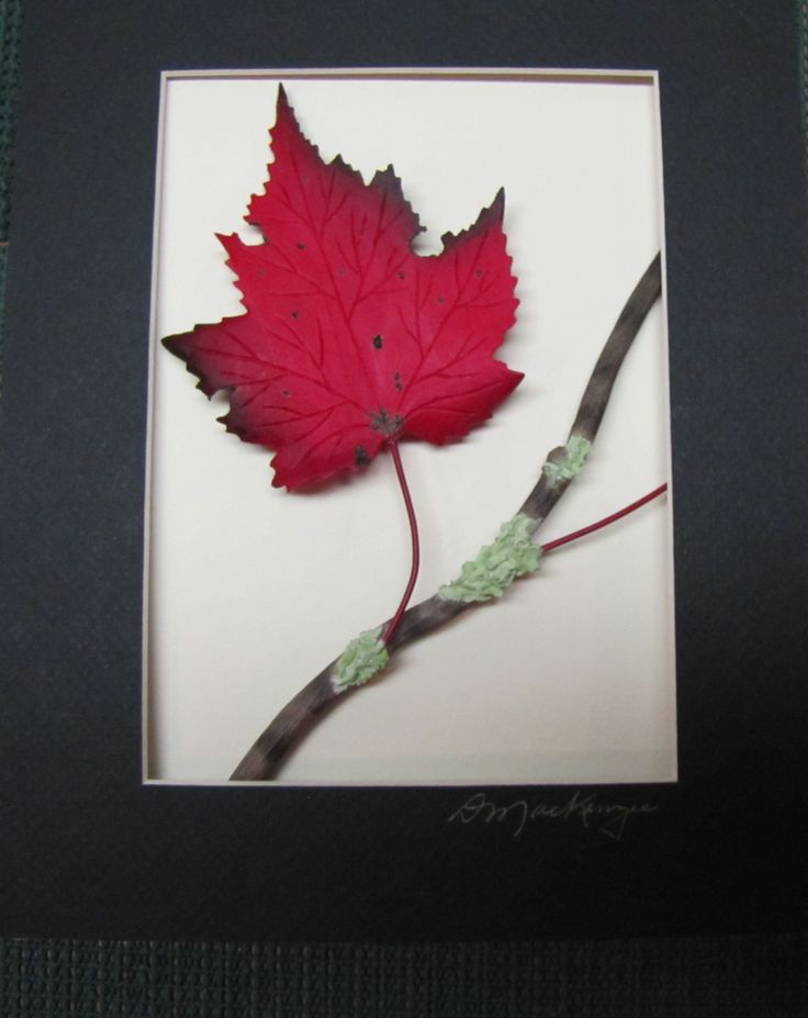 FOR THE ONE AWAY FROM HOME: This basswood hand sculptured Red Maple on a hand sculpted branch is in a custom made 8 x 10 ash frame It is hand painted in acrylic washes