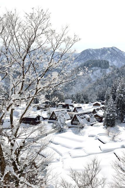 Winter night in Historic Villages of Ainokura in Gokayama, Toyama, Japan