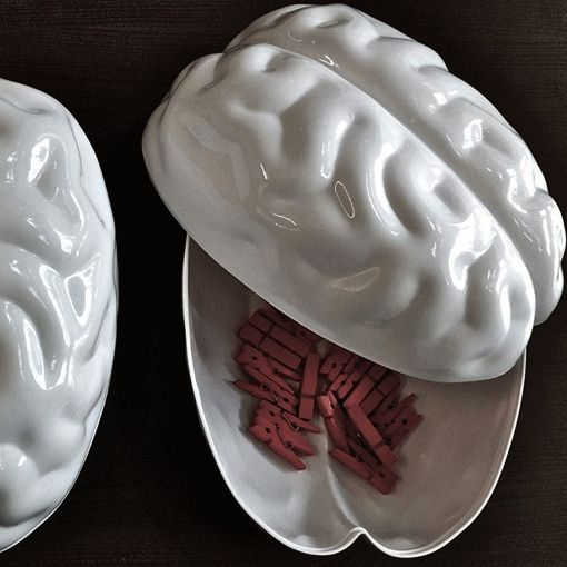 Brain Container | Unusual Gifts