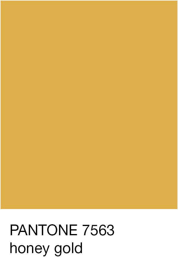 the gallery for gt gold color code pantone