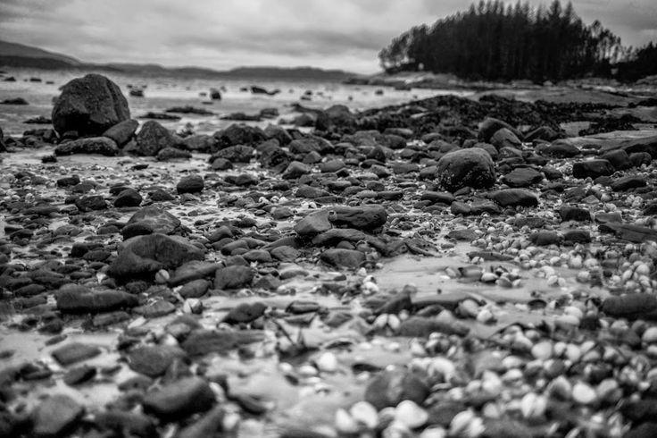 Korin Susanne: black and grey beach