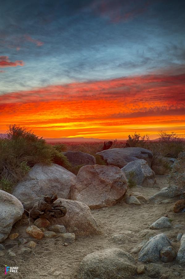 Borrego Palm Canyon in Borrego Springs, CA.