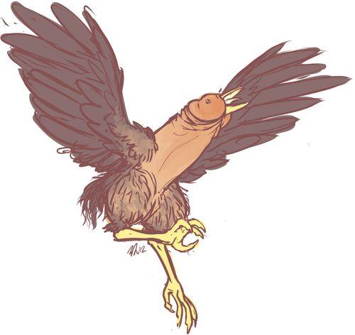 Poos+Wees Dick Hawk
