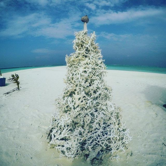#MemoriesMonday - Enjoying the #coral #christmas #tree in the #Maldives! #instaphoto #instatravel #travel #travelblog #travelbloggers #wanderlust #GoPro #GoProHero4 #beach #island #paradise #atoll #takemeback #holiday #livingthedream #memories #beautiful