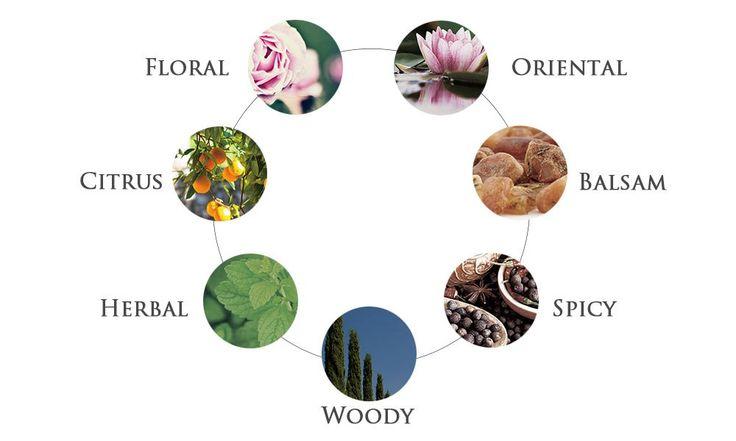 香りの系統と特徴|精油・エッセンシャルオイル・アロマの基本 | Timeless Edition