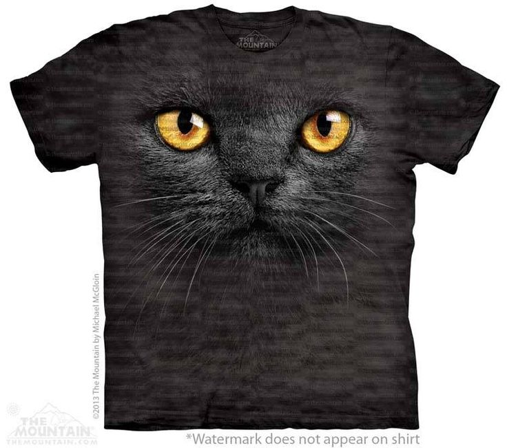 Black Cat T-Shirt - Click image to see hundreds of different animal t-shirts #themountaintees