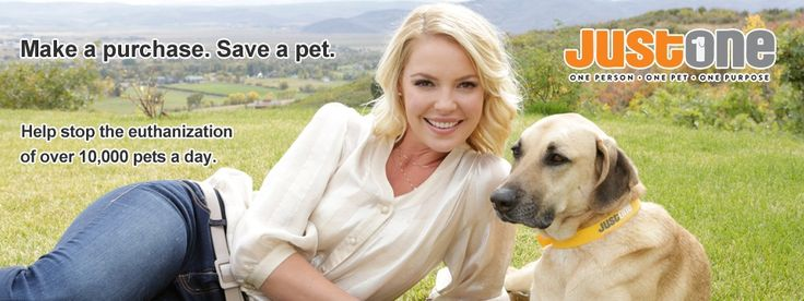 Just One - One Person - One Pet - One Purpose.  The Jason Heigl Foundation * A good cause to support *