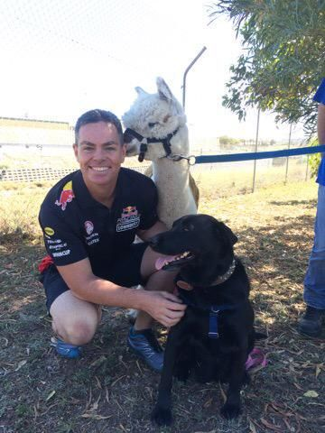 CRAIG LOWNDES AS GOOD AS THEY COME