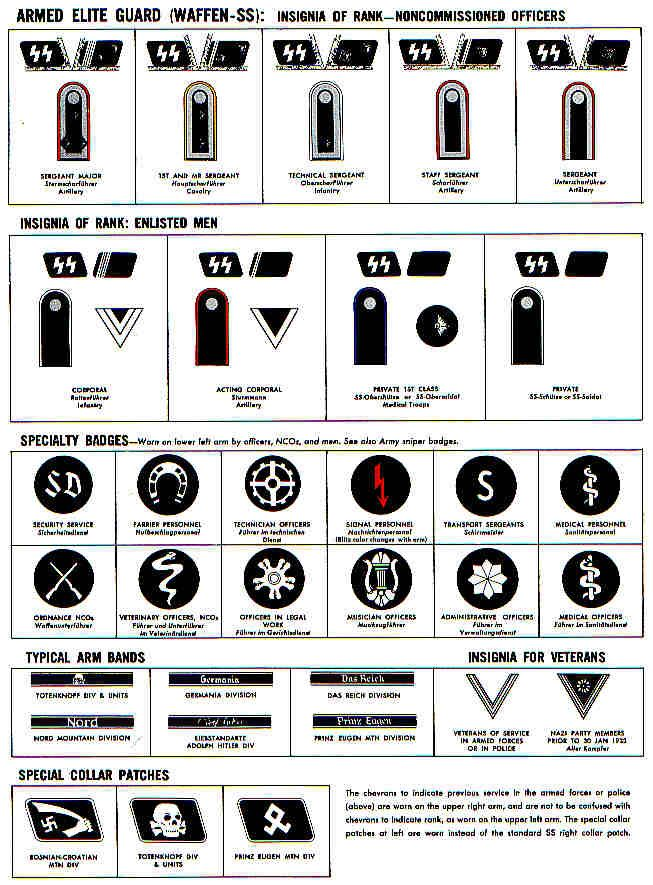 WAFFEN SS ENLISTED RANKS AND SPECIALIST BADGES