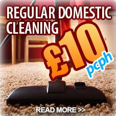 Domestic Cleaning in Kensington for a healthy home http://www.niceandcleankensington.co.uk/domestic-cleaning-kensington.htm