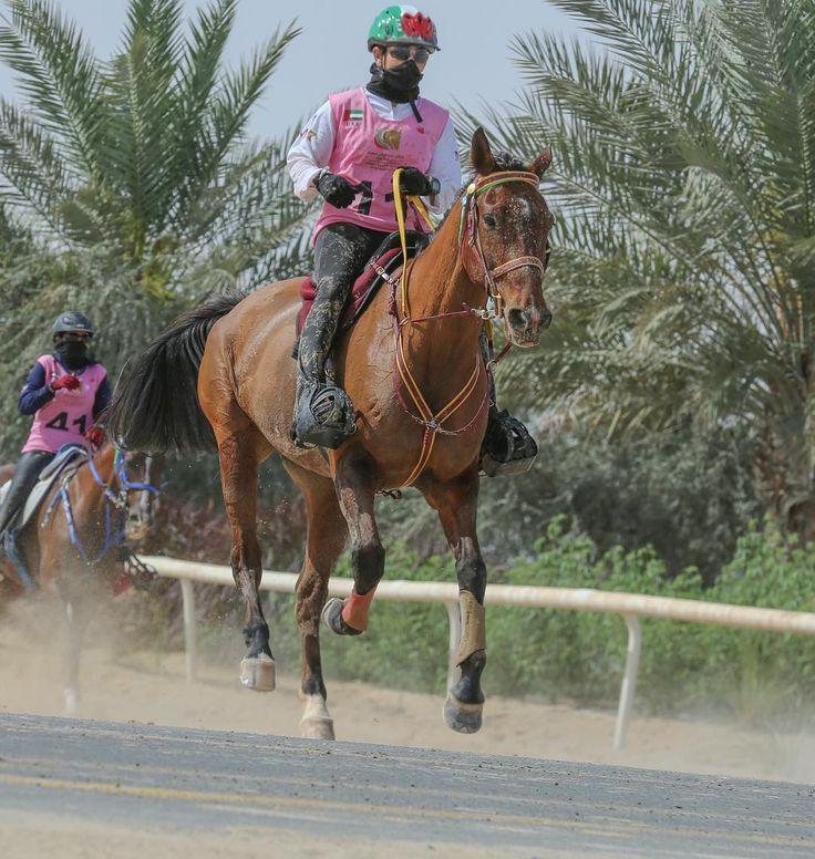 Futaim bint Mohammed bin Rashid Al Maktoum, 🏆, 13/03/2017. Foto: adoalfares