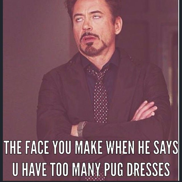 Funny Meme Iconosquare : Best p u g memes images on pinterest chistes funny