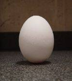 Egg balanced on end before the equinox