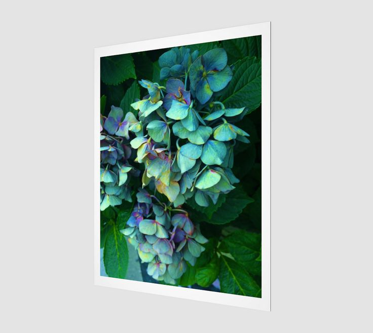 """Art+print+""""Treasure+of+Nature+VII""""+by+Mixed+Imagery"""