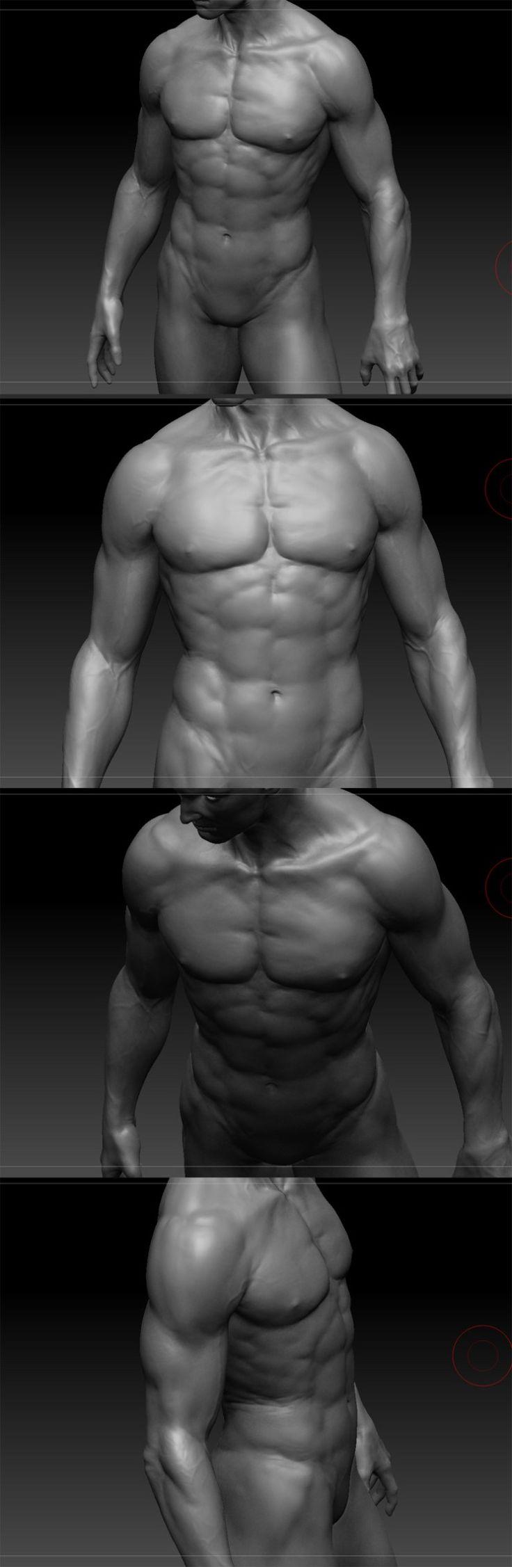 Human anatomy study_vray [출처] Human anatomy study_vray|작성자 장성환