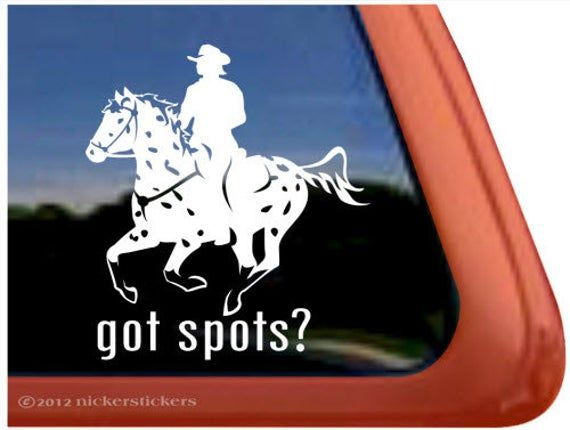 I Love My AppaloosaHigh Quality Vinyl Horse Window Decal Sticker