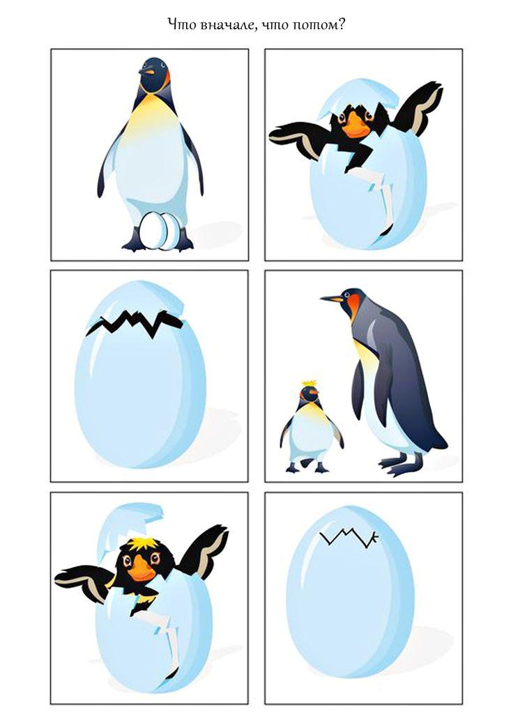 Рссказ про маленького пингвина на английском 4 класс