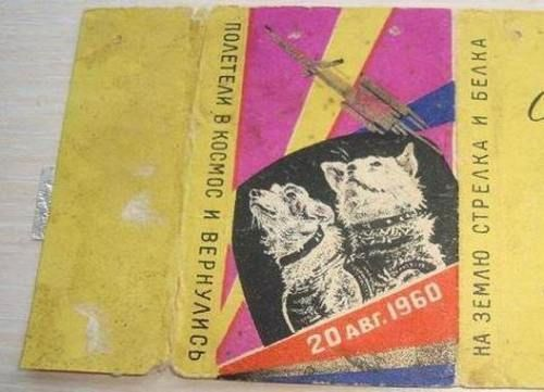1960 's USSR space soviet kosmos space Laika Layka dog first chocolate wrapper in Collectibles, Historical Memorabilia, Other Historical Memorabilia | eBay