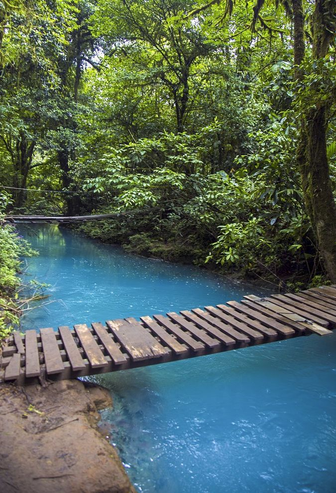 Rio Celeste, the sky blue river in Costa Rica. Click through to read our guide to visiting: http://mytanfeet.com/activities/tips-visiting-rio-celeste/