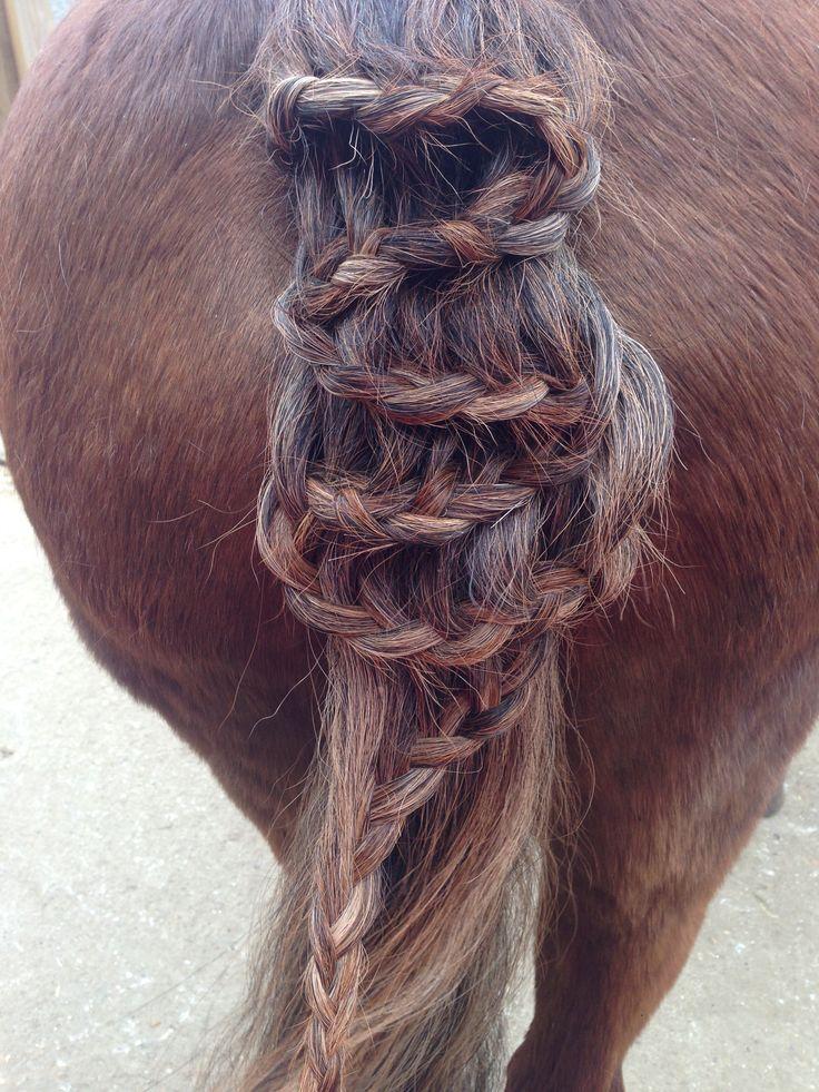 🐴zig-zag running French braid