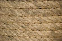 Cuerda - Wikipedia, la enciclopedia libre
