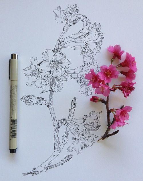 illustration tatouage: