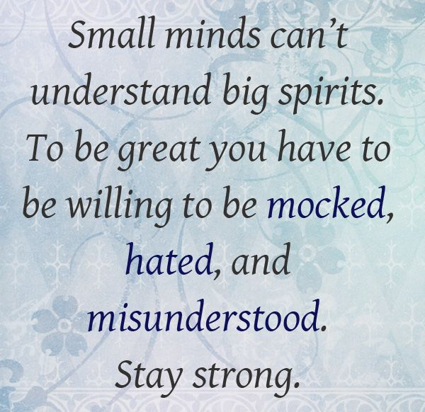 small minds can't understand big spirits;   to be great you have to be willing to be mocked, hated, and misunderstood.  STAY STRONG!Misunderstood Stay, Small Mindfulness, Understand Big, Big Spirit, Stay Strong, Cant Understand, Mindfulness Cant, Inspiration Quotes, Mocking Hate