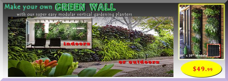 Make your own #greenwall #vertical gardening http://moderngarden.co/Vertical%20Gardening%20Planter.php