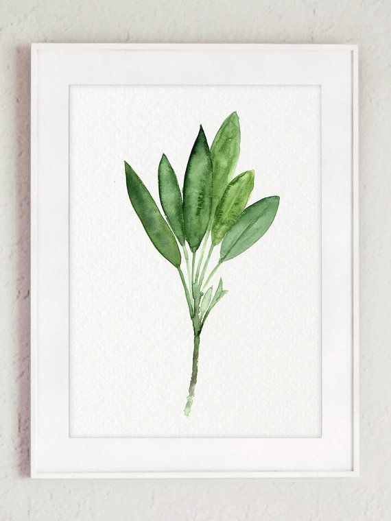 Thyme Watercolor Painting Sage Art Print Basil by ColorWatercolor