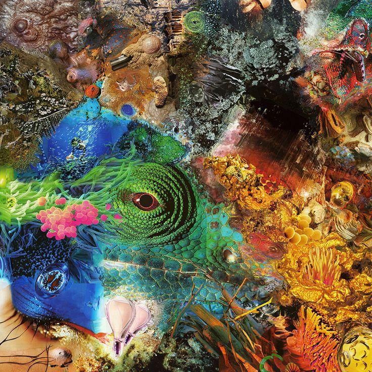 Pavel Shangin - Magazine Collage