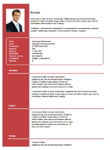 gratis cv sjabloon Gratis CV sjabloon van .cv voorbeeld.nl | Microsoft Word