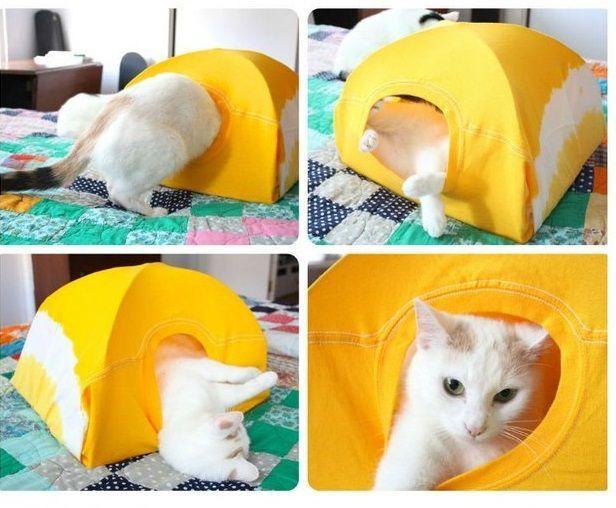 Используя ненужную футболку (желательно – побольше размером) и проволочные вешалки-плечики, организуйте настоящую палатку для любимца.е