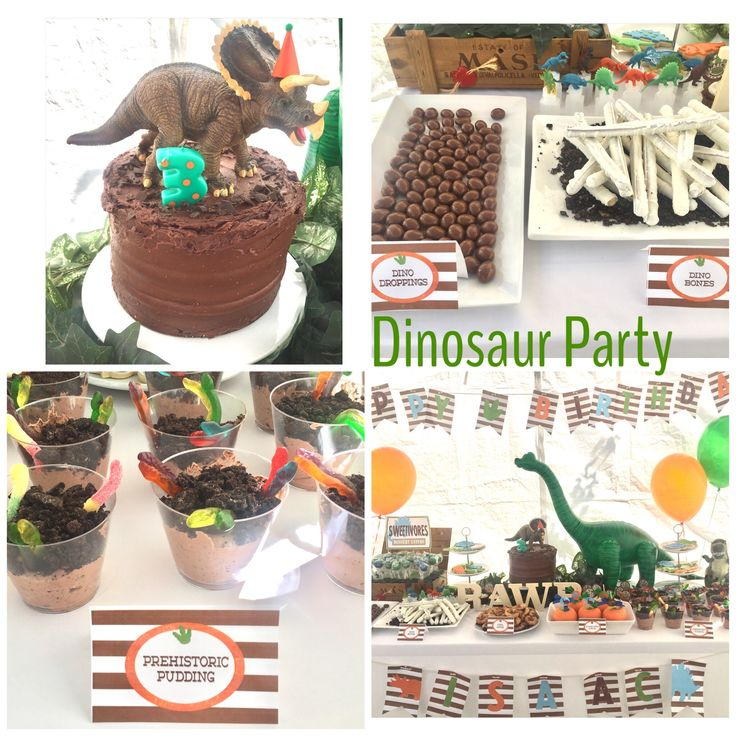 Dinosaur theme birthday party . I did this for my nephew Isaac's 3rd birthday party. Dinodroppings = chocolate covered almonds which I found at tjmaxx(Easter season) Dino bones = white chocolate covered pretzels Prehistoric pudding = jello pudding , 8oz cool whip , Oreo cookies , gummy worms .... very good! And a few other desserts like fossil cookies, cake pops , cupcakes ... Super cute. Dino party . Green and orange balloons .