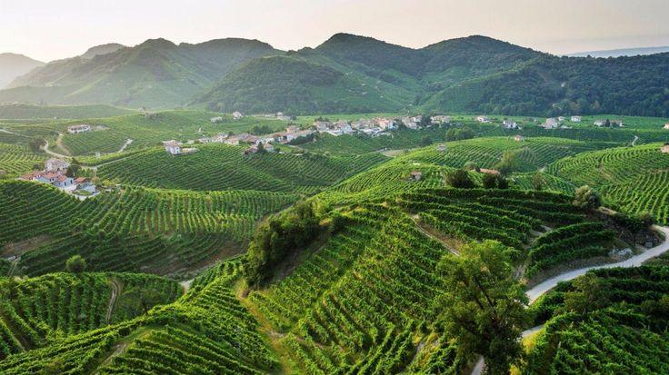 Gli itinerari più belli delle nostre terre... Panorami da gustare e cibi e bevande da degustare! Anche il TGCOM ci menziona in un articolo che tocca solo una piccola parte delle meraviglie dei nostri luoghi!