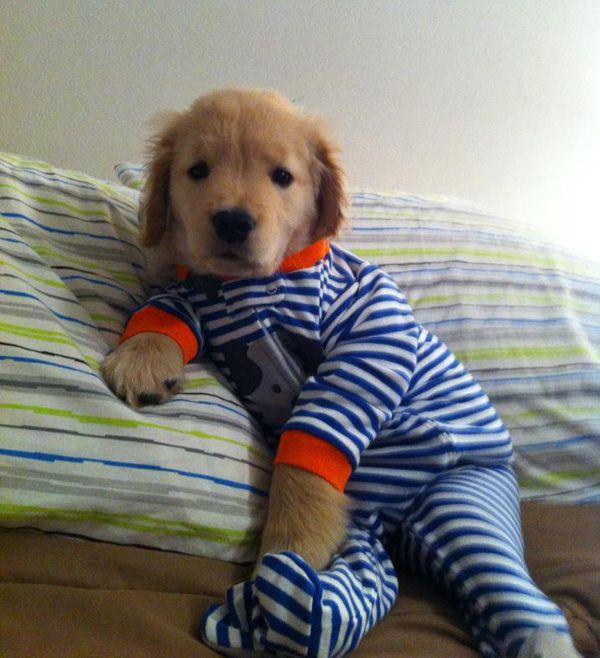 """Okay -- I'm ready for the slumber party!"""
