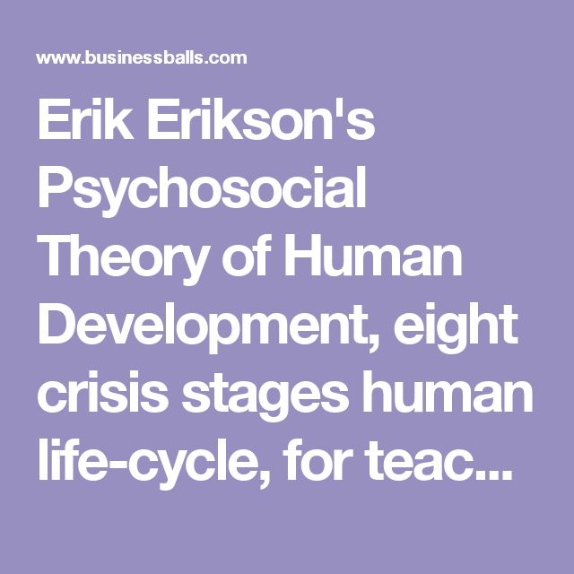 the application of erik eriksons theories essay Erik erikson theory of development print reference this disclaimer: this essay has been there have been many theories on this ground like freud's.