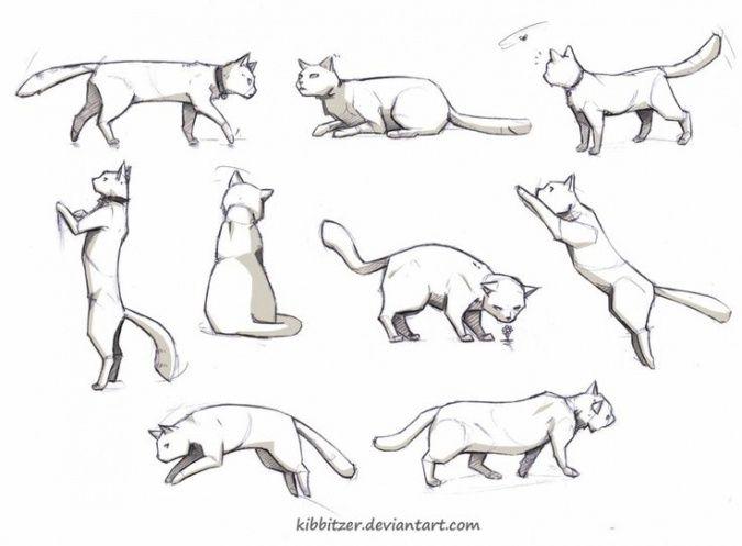 Как рисовать кошек