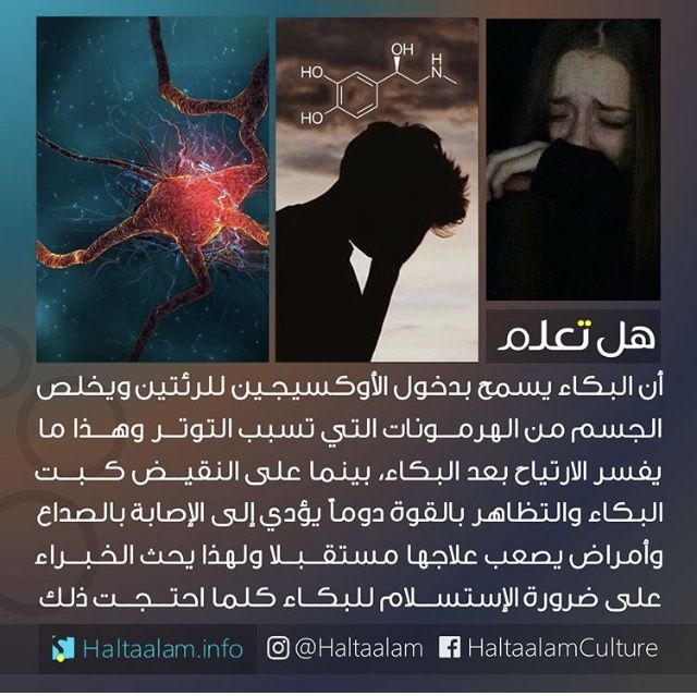 Pin By Rayan Zubedat On هل تعلم Arabic Books Did You Know Social Media